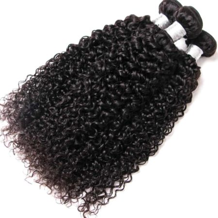 Indian Human Kinky Curly Hair 3 Bundles With Weave Closure Piece (5)