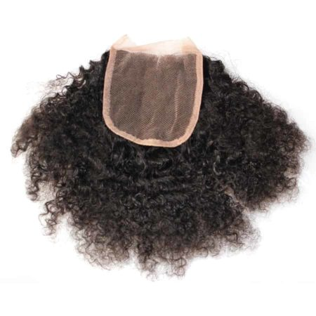 Brazilian Remy Afro Kinky Curly Weave Human Hair Bundles With 4x4 Lace Closure (5)