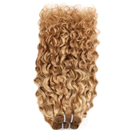 Brazilian Wet And Wavy Human Hair Weave Ombre P27 613 Two Tone Hair Extensions (4)
