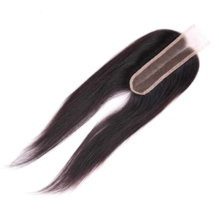 Malaysian Straight Human Hair Middle Part 2 x 6 Lace Closure 8-22 (3)