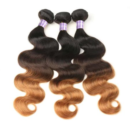 Peruvian Human Body Wave Ombre Bundles With Closure T1B 4 30 Color