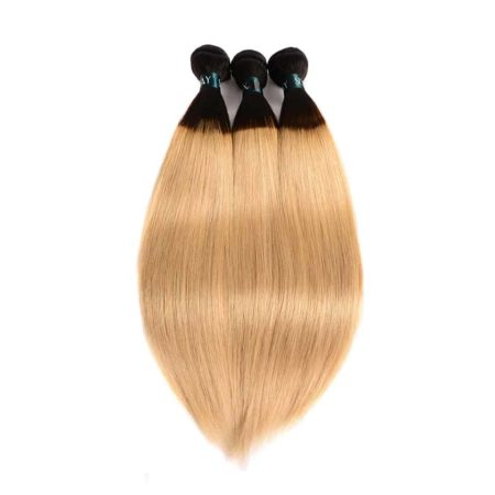 Peruvian Straight T1B 27 Ombre Blonde Human Hair 3 Bundles With Lace Closure With Dark Roots (3)